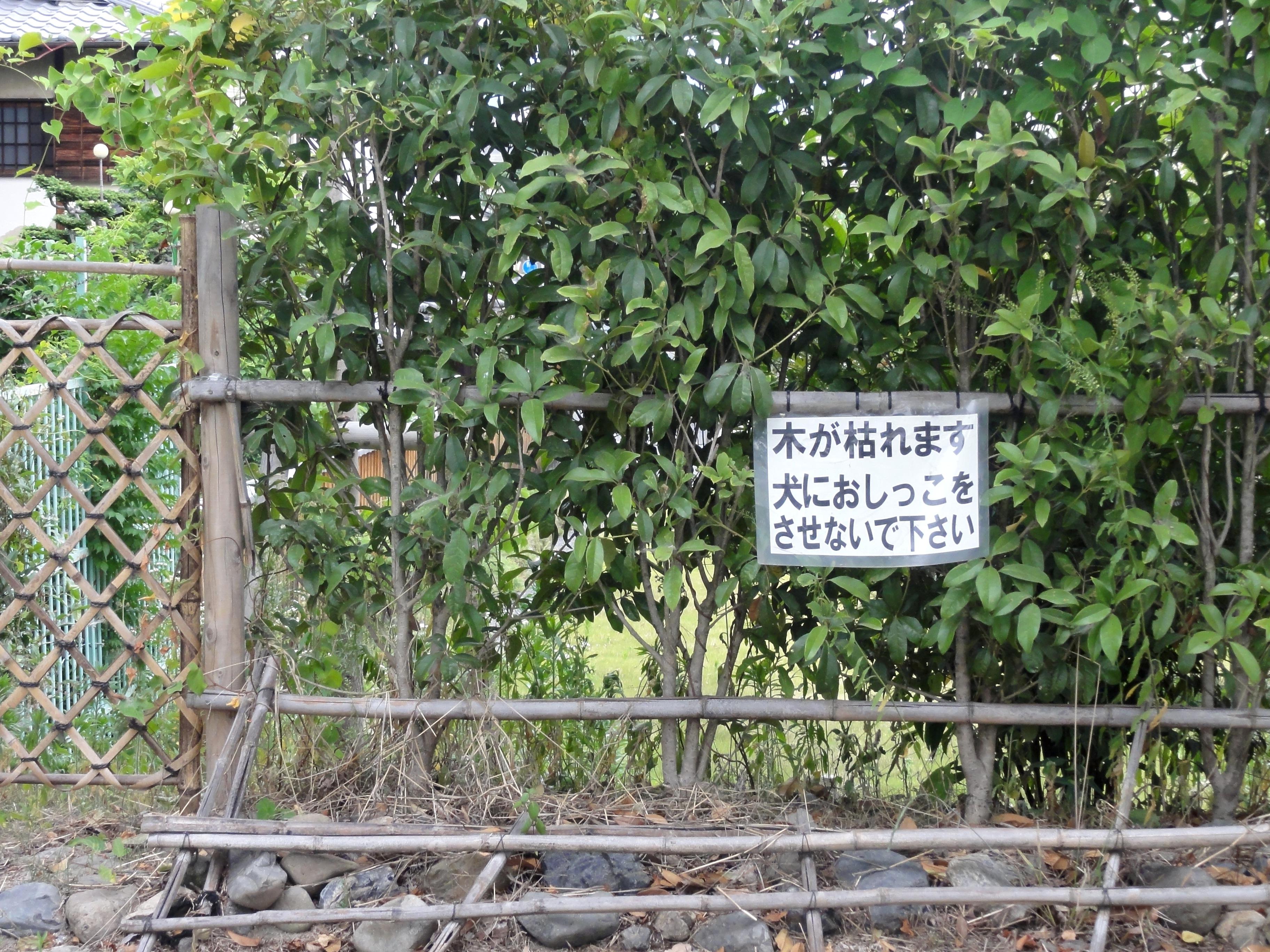 learn-kanji-Japanese-sign-kamogawa